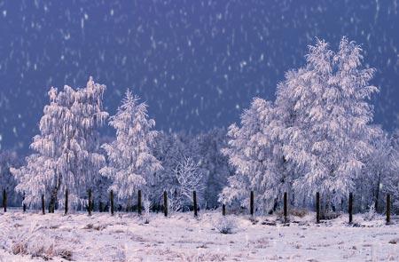 Добавляем снег в фотографию