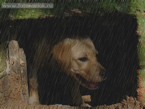 Эффект дождя в фотошоп