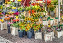 Цветочный рынок Амстердам