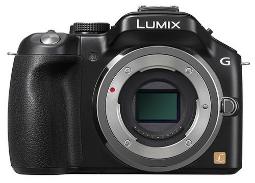 Panasonic Lumix DMC-G5 + объектив 45-150 мм