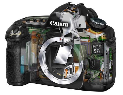 Зеркальный фотоаппарат - как выбрать и купить