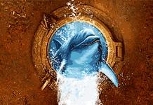 Ежегодный фестиваль активного отдыха на воде «Золотой дельфин»