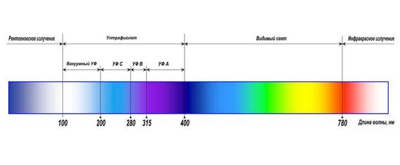 видимая человеческому глазу часть спектра