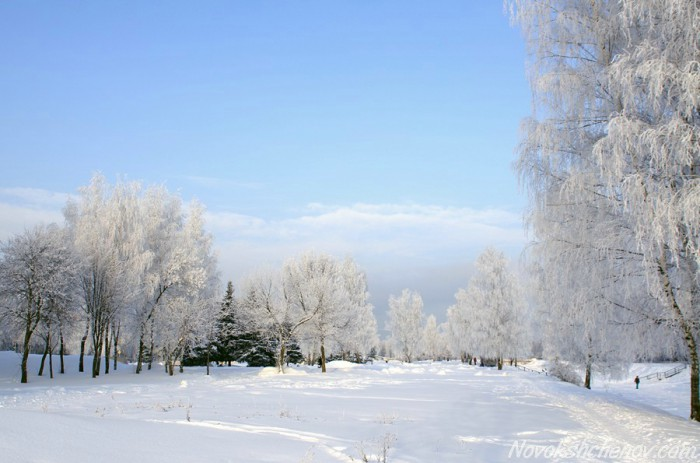 winter-photo-04