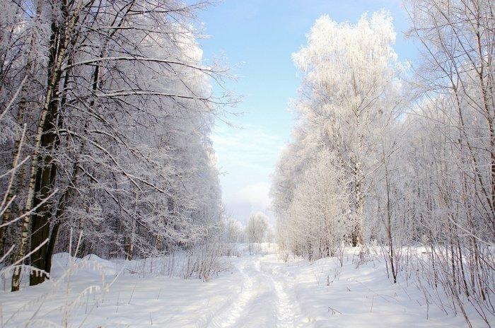 Зимние фотографии