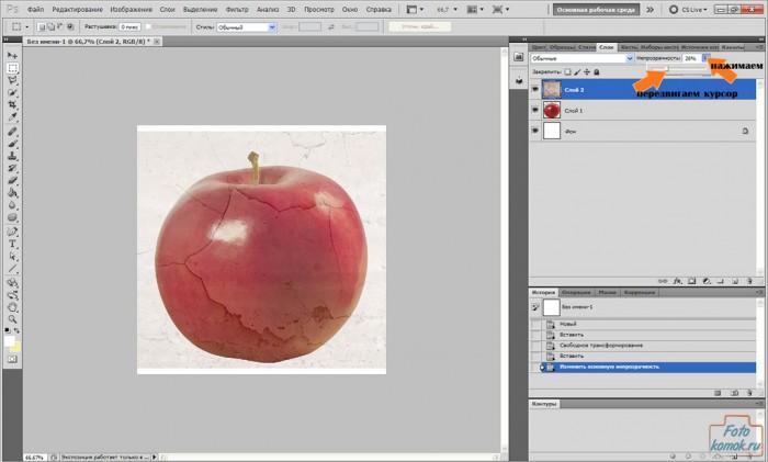 apple-pt-04