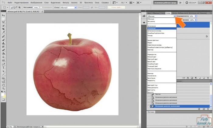 apple-pt-06