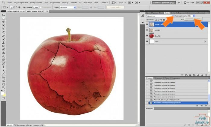 apple-pt-09