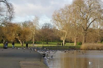 Риджентс-парк, Лондон, январь