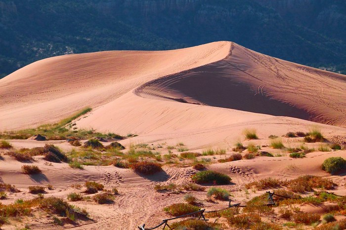 Розовые песчаные дюны, США