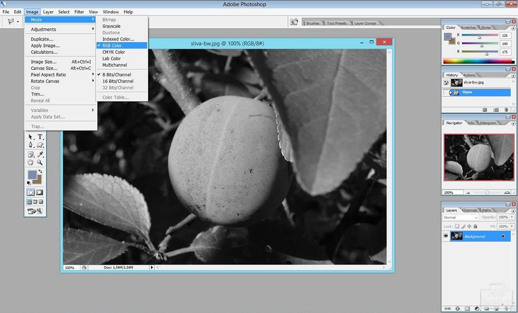 преобразование фото в черно белое онлайн