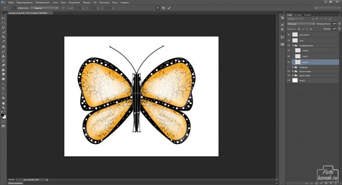 Иконка бабочка-30