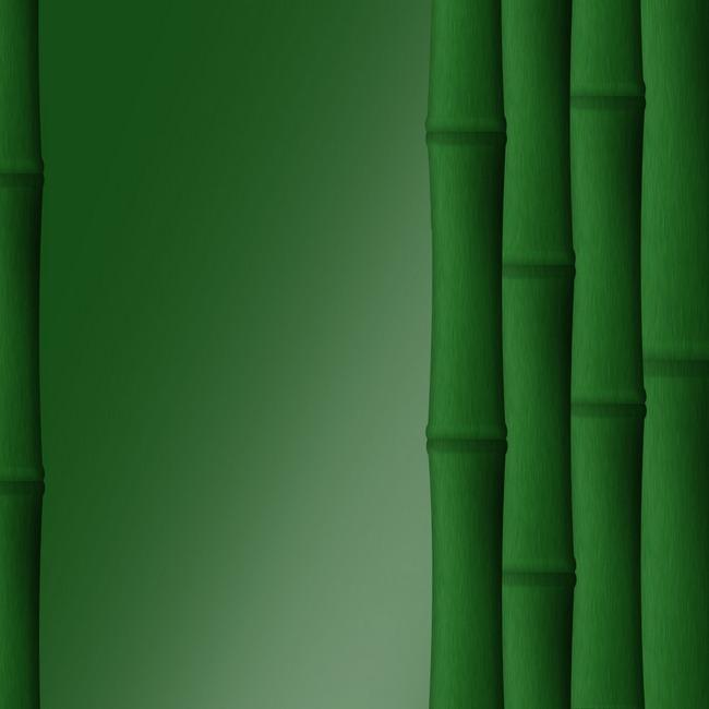 Обои Бамбук