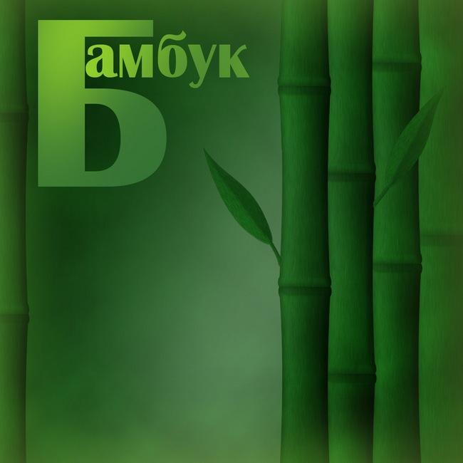 Обои Бамбук в Фотошоп