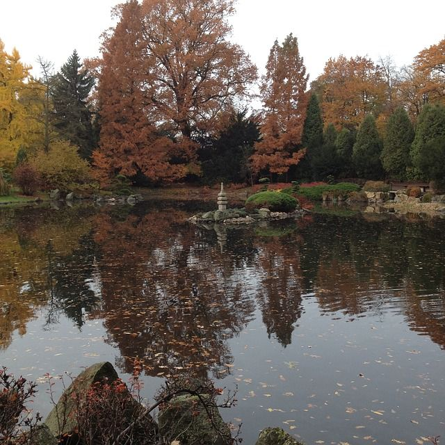 Вроцлав, японский сад