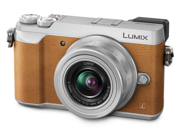 Panasonic LUMIX DMC-GX80 side