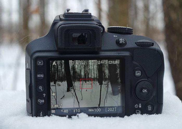 Nikon D3400-disp