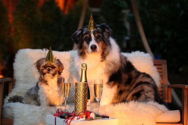 Шаблоны новогодних открыток 2017. Часть 2