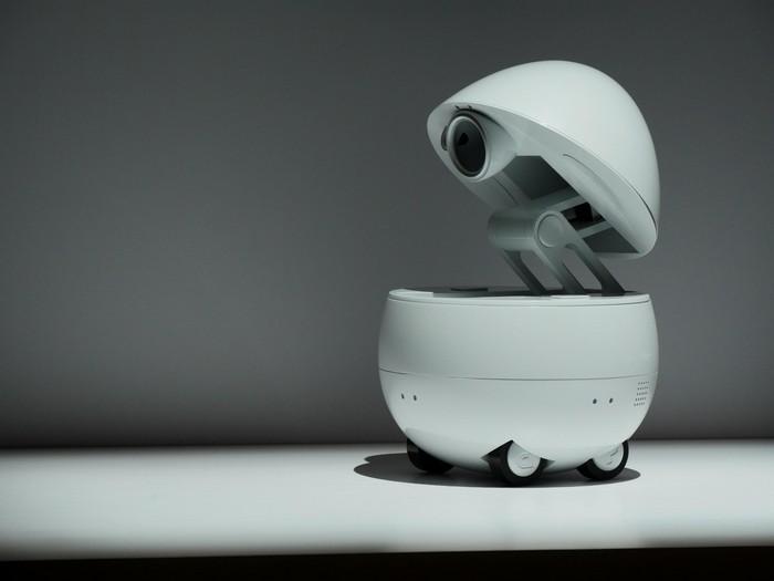 Робот-яйцо Panasonic