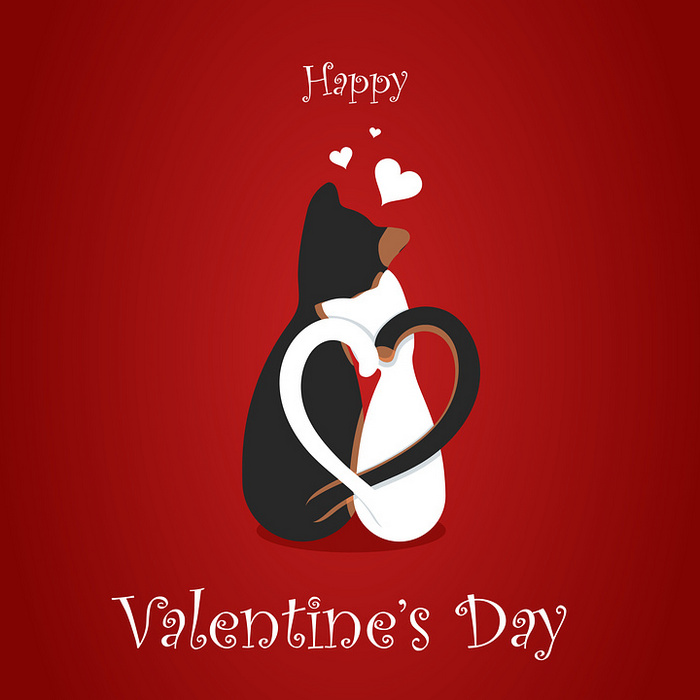 Валентинка - котики