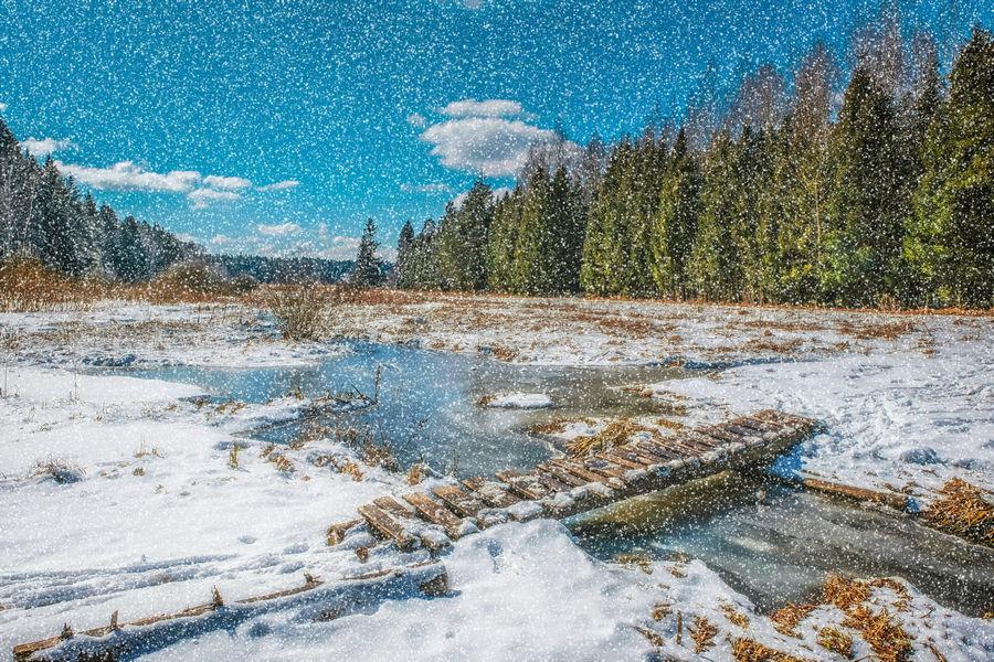 AKVIS NatureArt - имитация природных явлений на фотографиях