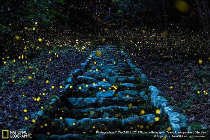Победители Travel Photographer of the Year Contest 2017