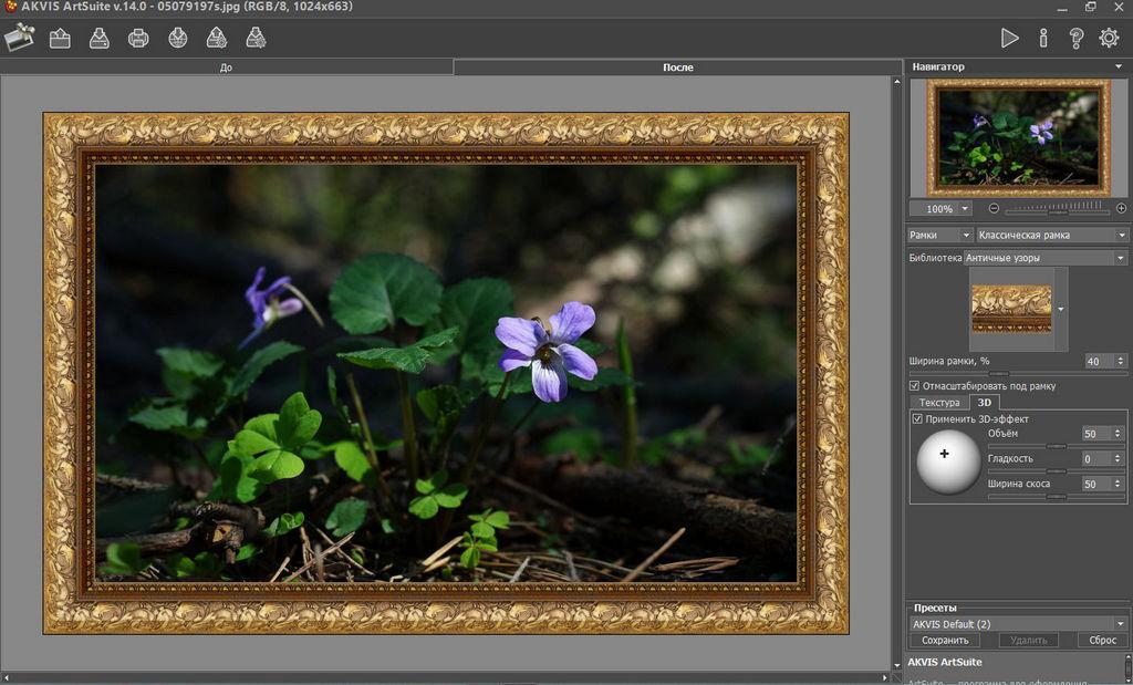 AKVIS ArtSuite 14 - творческое оформление фотографий