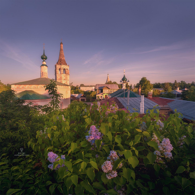 Суздаль, Владимирская область. Canon 6D + Irix 15mm f/2.4, iso 400, выдержка 1/100, f/11