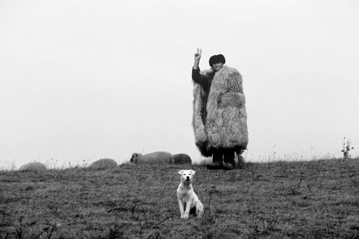 Петер Корниш. Символ победившей революции, 1989