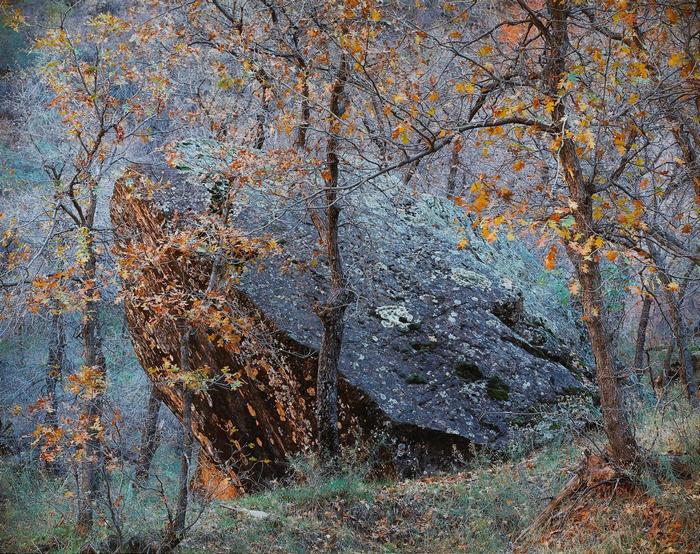 Christopher Burkett. Fallen Rock, Utah, 1987.