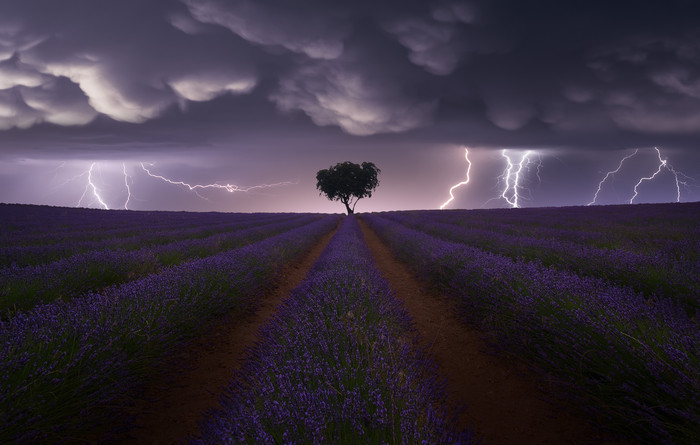 Copyright: © Juan López Ruiz, Spain, Category Winner, Open, Landscape, 2021 Sony World Photography Awards