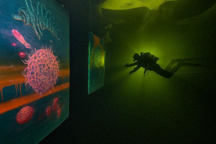 Фотовыставка под водой «Пока не растаял лёд»