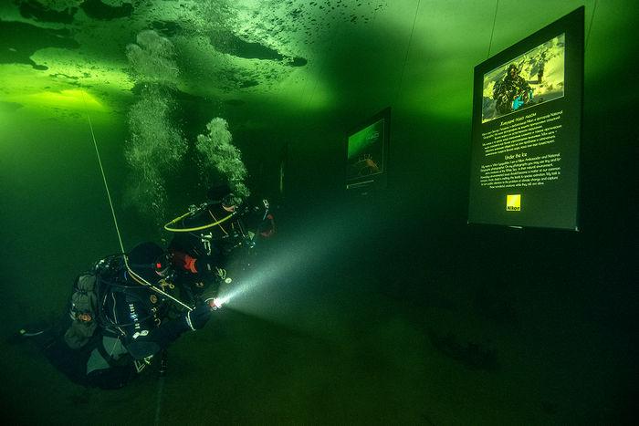 Фотовыставка под водой