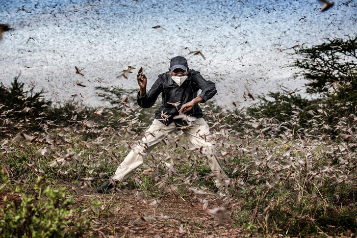 Copyright: © Luis Tato, Spain, Winner, Professional, Wildlife & Nature, 2021 Sony World Photography Awards